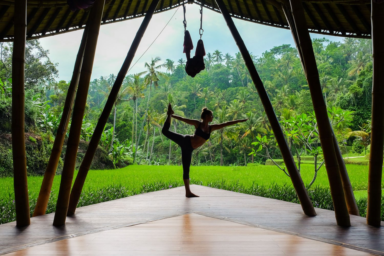 Yoga Teacher Success