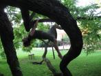 Lisa Long retreat in Jacksonville - photo 7