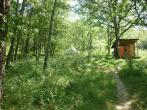 Family Yoga Holidays ! retreat in Festes et St Andre - photo 2