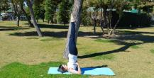 FREE HATHA YOGA OPEN CLASS FOR YOU !!! retreat in Guildford - photo 0
