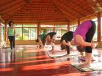 Traditional Hatha Yoga Teacher Training in India retreat in Mysore - photo 5