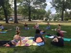 Hot Yoga Teacher Training (YA - RYT): 250hrs, Washington DC retreat in Riverdale Park - photo 17