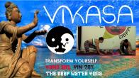 Vikasa Yoga Workshop & Fundraiser: 30% Yang 70% Yin retreat in Brooklyn - photo 5
