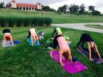 Park Yoga-Tower Grove retreat in St. Louis - photo 0