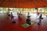 Traditional Hatha Yoga Teacher Training in India (200 Hours) retreat in Mysore - Kerala - photo 28