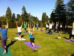 Sam Rao Yoga Teacher Training YA250hrs. retreat in Heckfield - photo 1