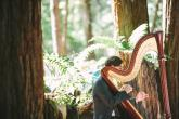 Restorative Yoga workshop with Live Harp Music retreat in Arcata - photo 0