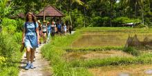 Self-care & Self-love retreat - Exclusively for Women retreat in Ubud - photo 5