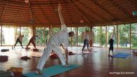 Yoga Intensive Retreat at AyurYoga Eco-Ashram in India retreat in Mysore - photo 21