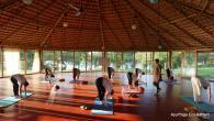 Yoga Intensive Retreat at AyurYoga Eco-Ashram in India retreat in Mysore - photo 19