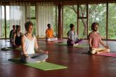 300 Hrs Advanced Hatha Yoga Teacher Training at AyurYoga Eco-Ashram, India retreat in Mysore - photo 21