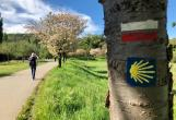 Chartres Labyrinth Pilgrimage Retreat- France 2021 retreat in Barzana de Quiros - photo 32