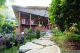 Bring Back The Frolick! A Retreat for Your Inner Optimist retreat in Puntarenas - photo 19