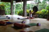 ONEWORLD retreats retreat in Ubud - photo 5