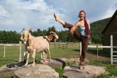 Woodstock Farm Sanctuary retreat in High Falls - photo 1
