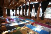 Folk Tree Lodge retreat in Bragg Creek - photo 3