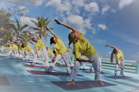Sivananda Ashram Yoga Teacher Training Bahamas Yoga Teacher Training Program In Nassau
