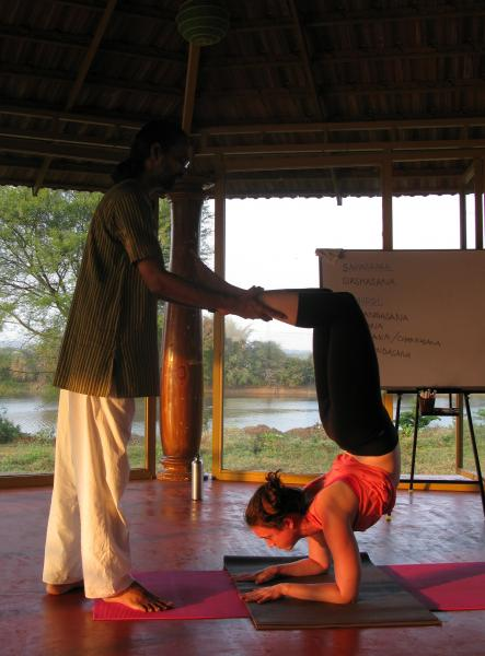 300 Hours Advanced Yoga Teachers Training in Traditional Hatha