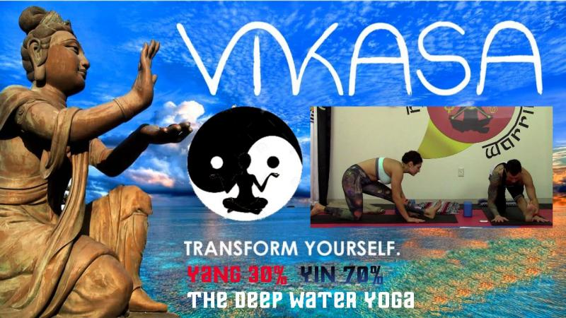 Vikasa Yoga Workshop & Fundraiser: 30% Yang 70% Yin