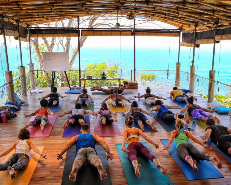 22 Days 200 hrs Intensive Energy Evolution Yoga Teacher Training