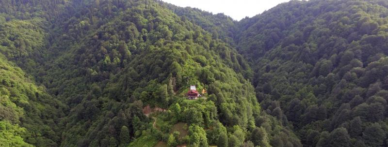 Yoga Retreat in Wild Nature