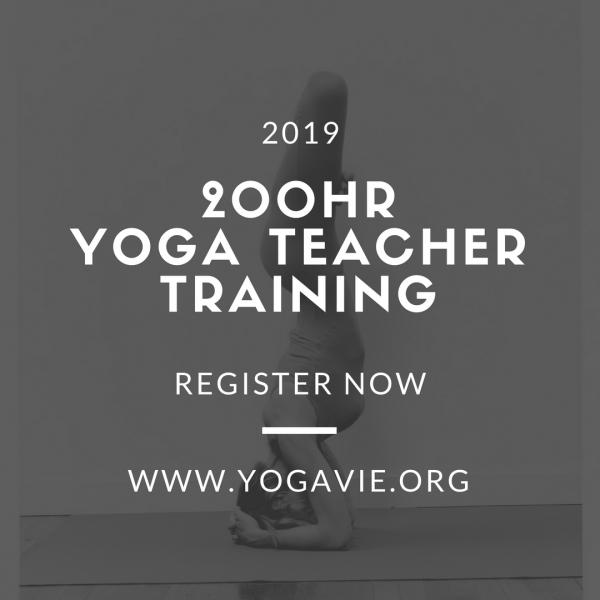 2019 200 hr Yoga Teacher Training