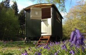 Eco-Glamping Yoga Retreat