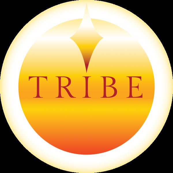 Tribe Yoga Teacher Training School
